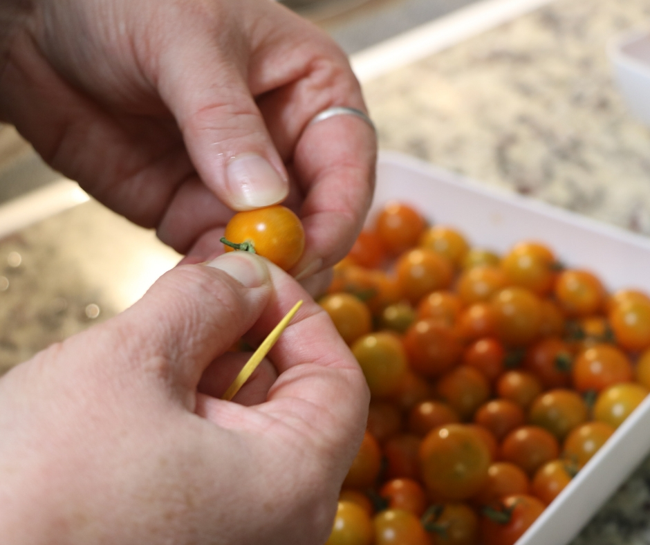 Easy Refrigerator Pickled Cherry Tomatoes Taking stems off plate full of cherry tomatoes