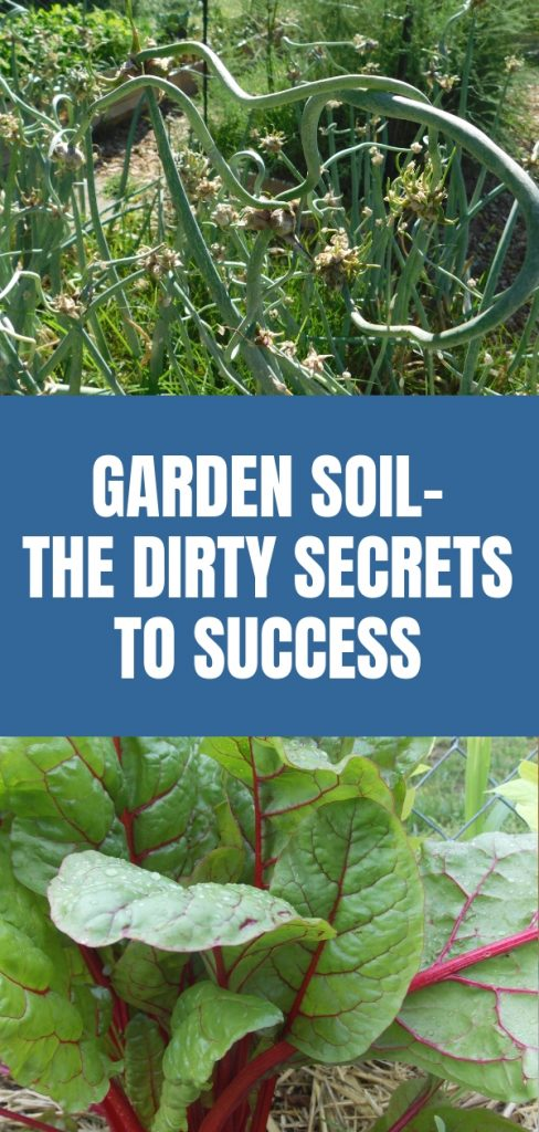Garden Soil-The Dirty Secrets to Success