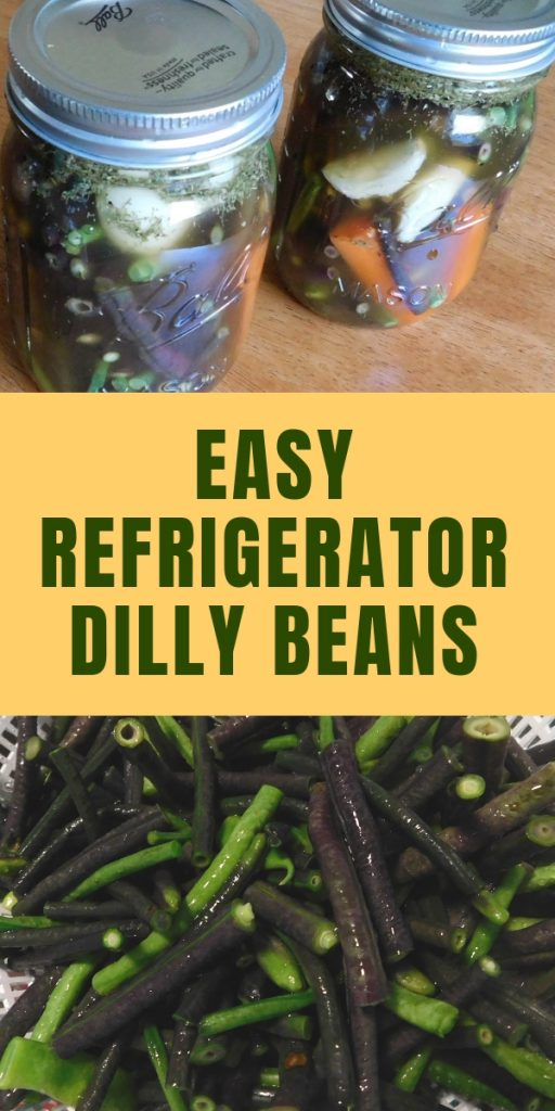 Have you heard of pickling green beans? They are delicious and very easy to make. Make your own refrigerator dilly beans in just a few minutes.