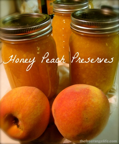 honey peach preserves on the counter with peaches
