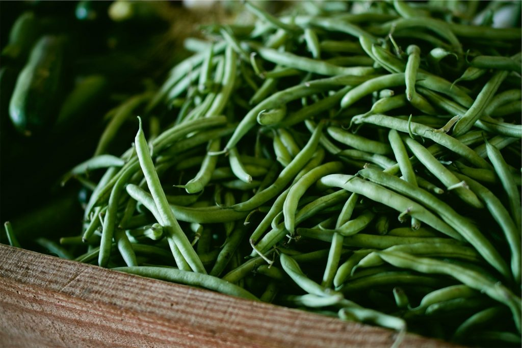 Box overflowing with fresh picked green beans from the garden