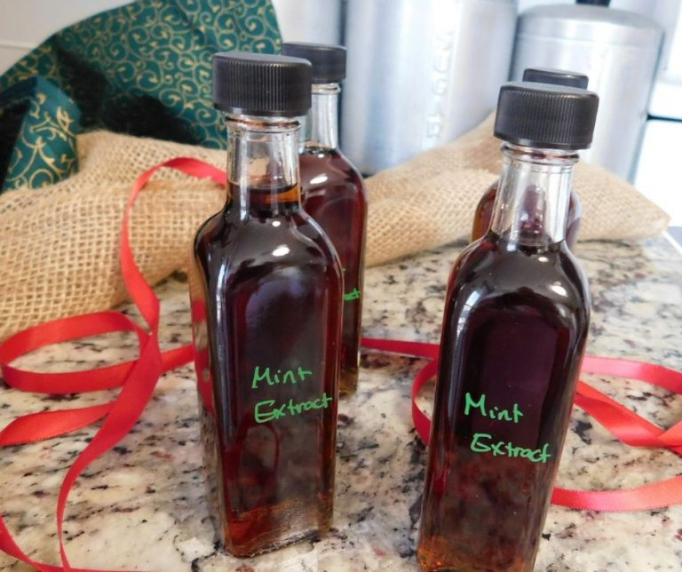 How to Make Homemade Mint Extract from your Garden