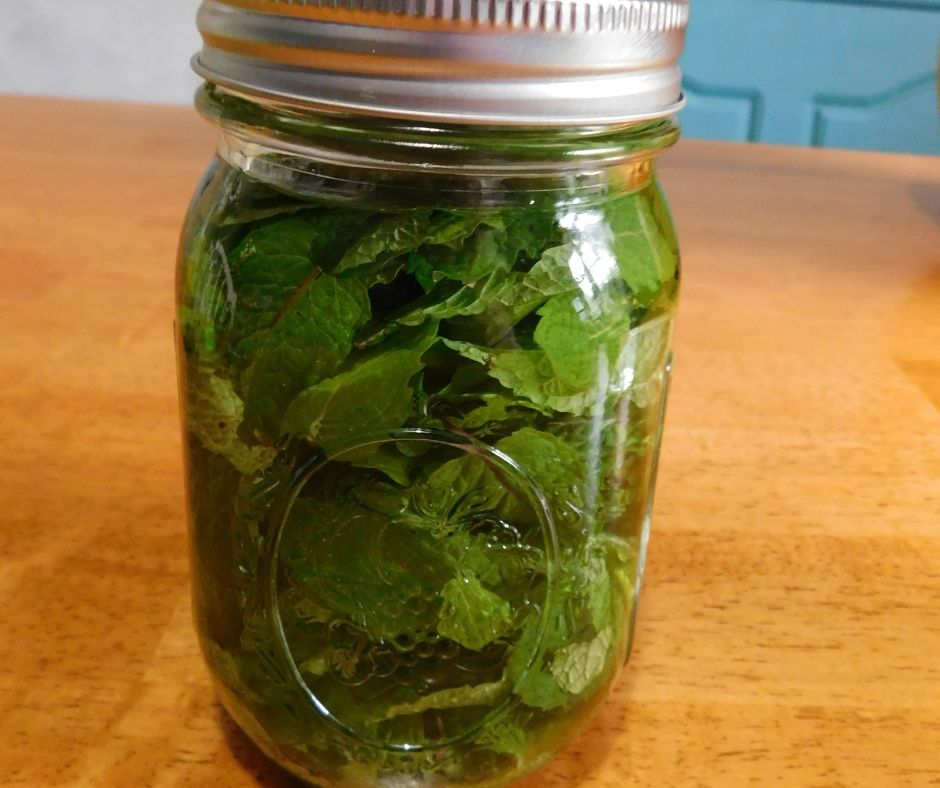 jar of mint and vodka on the table
