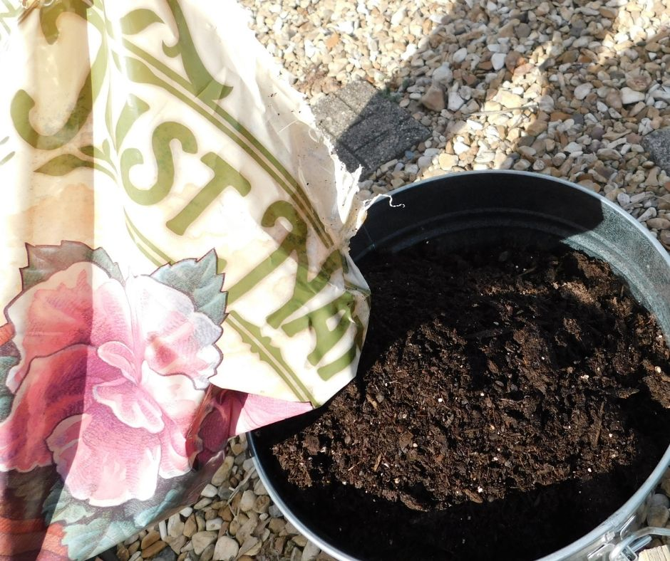 bag of potting soil being poured into a metal bucket garden