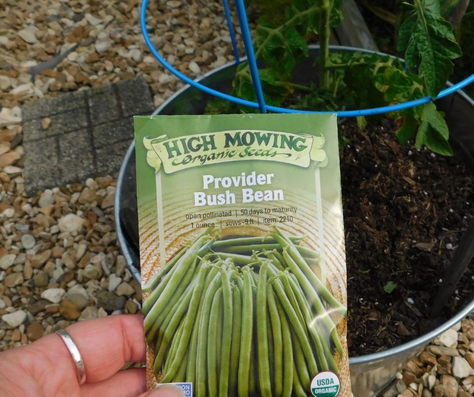 packet of provider bush beans in front of bucket garden ready for planting