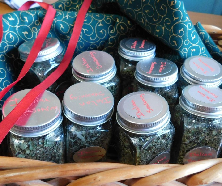 jars of homemade italian seasoning in a basket with green fabric and red ribbon
