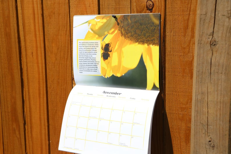 2020 bee photography calendar on a wooden fence