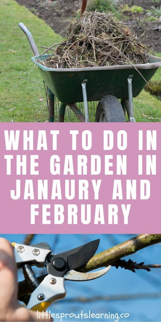 If you want to garden in winter and year-round, you can do it. Check out what to do in the garden in January and February.