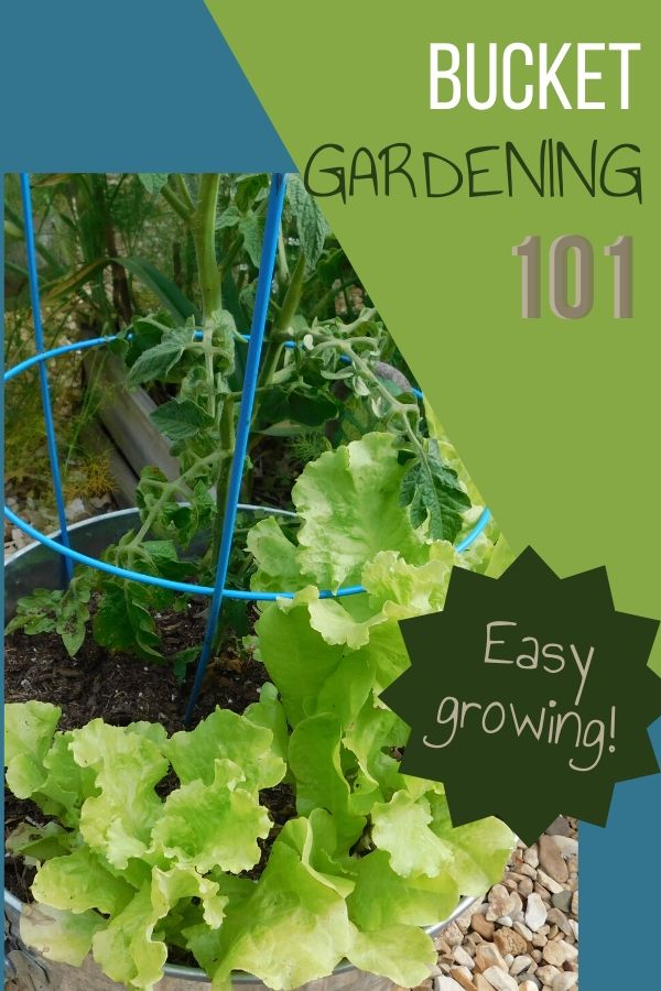 A great way to get started with gardening is to try bucket gardening. There is no weeding and it's a small space to keep up with while you're learning how to grow things yourself.