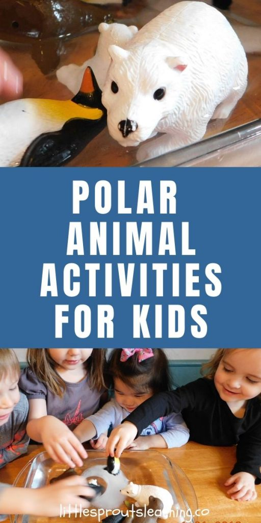 Learning about how polar animals survive in the severe cold is so interesting and fun. My kids have learned so much from these polar animals activities.