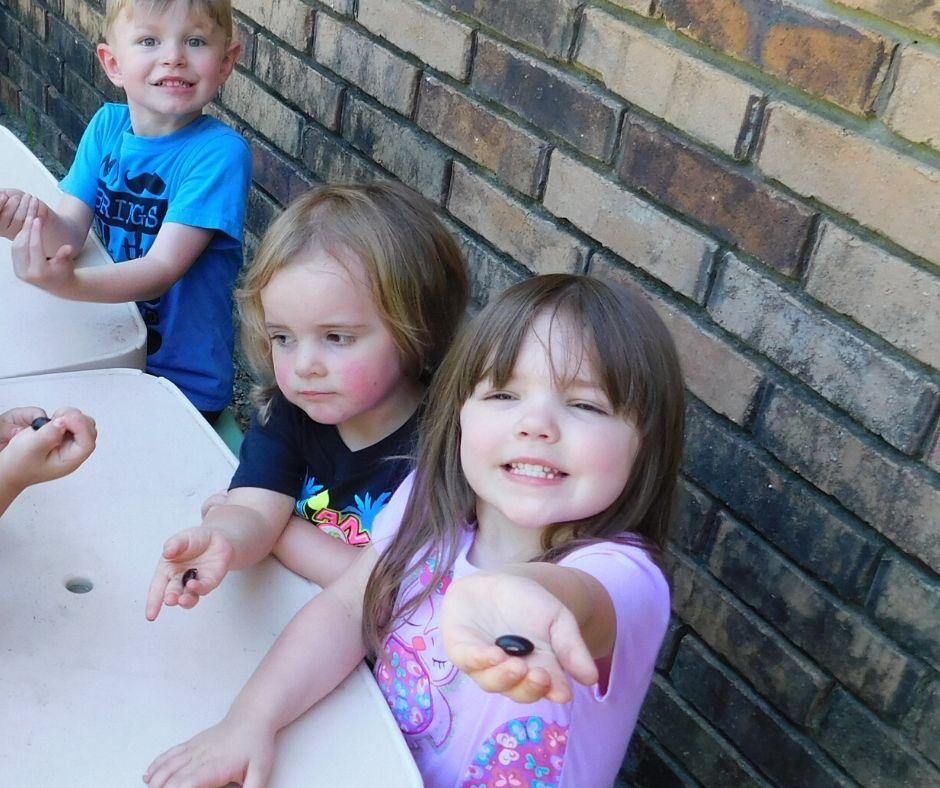 kids exploring seeds in the garden