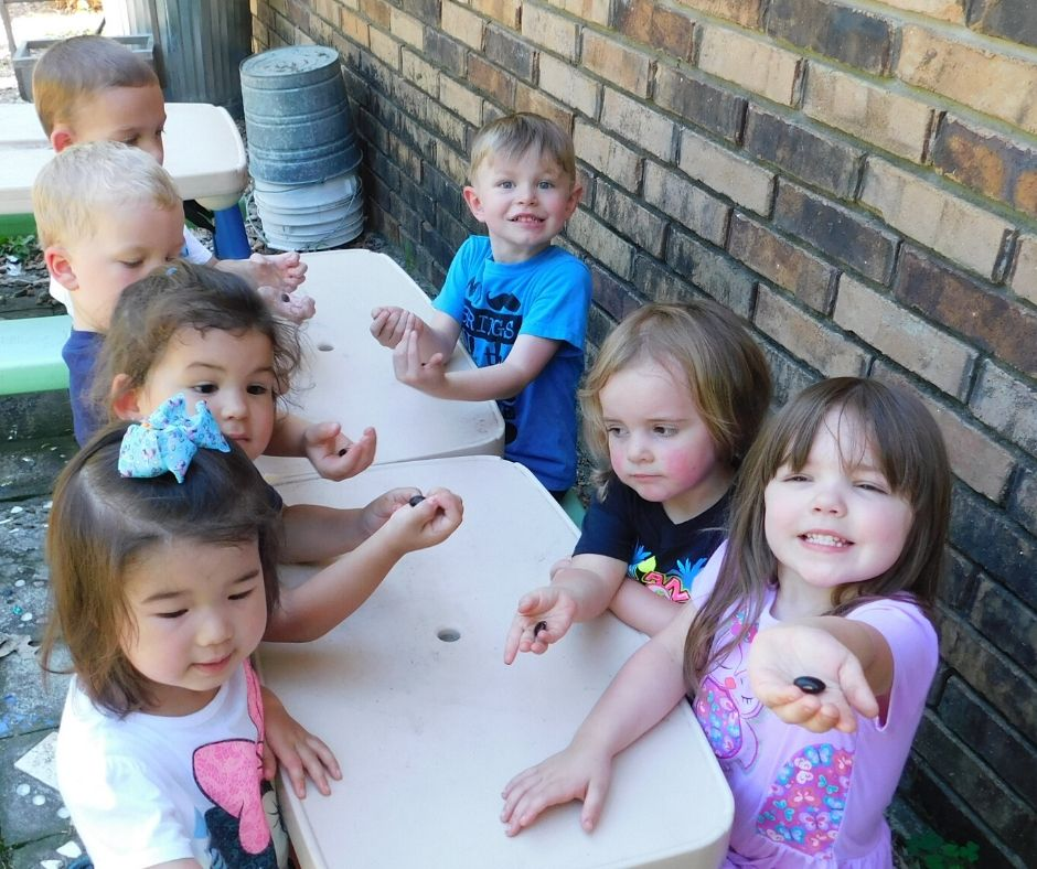 kids doing daycare activities, studying bean seeds at an outdoor table