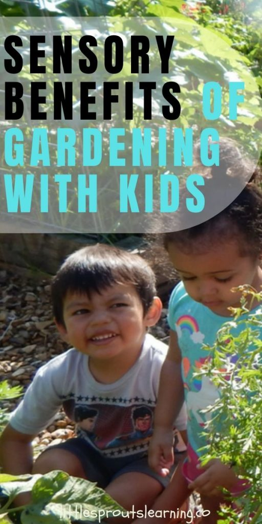 The garden has opportunities for kids to learn, but there are more benefits than we realize. There are a ton of sensory benefits of gardening with kids.