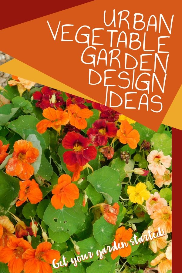 There are so many ways you can garden, you don't have to live on a farm. Check out these urban vegetable garden design ideas and get inspired!