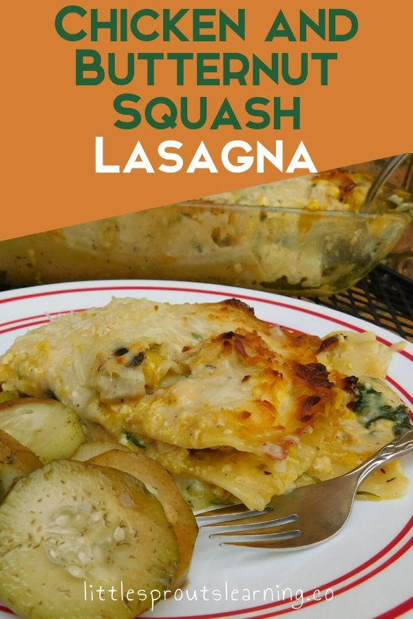 There's nothing better than a veggie packed meal that tastes creamy, cheesy and yummy. This chicken and butternut squash lasagna is incredible!