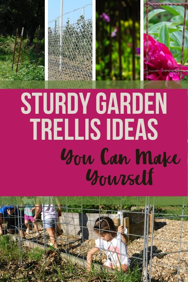 A good sturdy garden trellis is a great treasure in the garden. Check out these trellises you can make at home with what you might already have.
