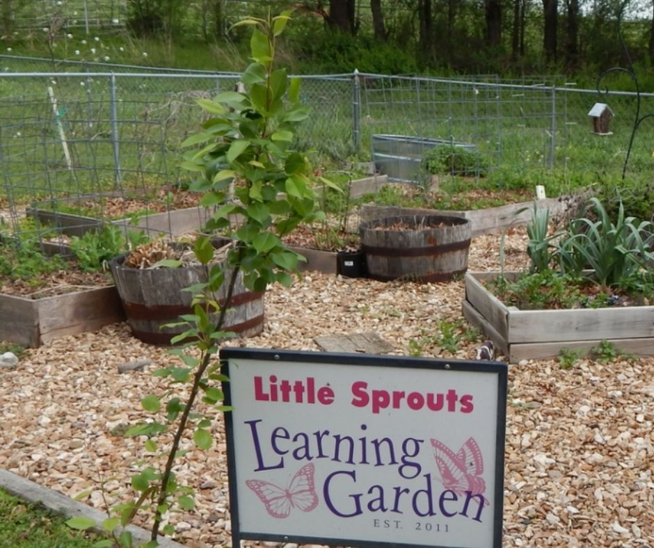 preschool garden in small home daycare