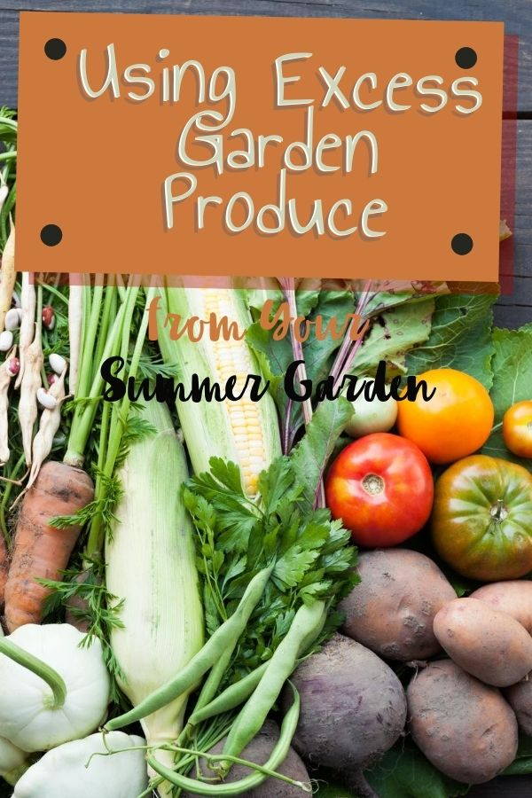 Sometimes the garden can put out more food than you know what to do with. Find ways for using your excess garden produce from your summer garden here.