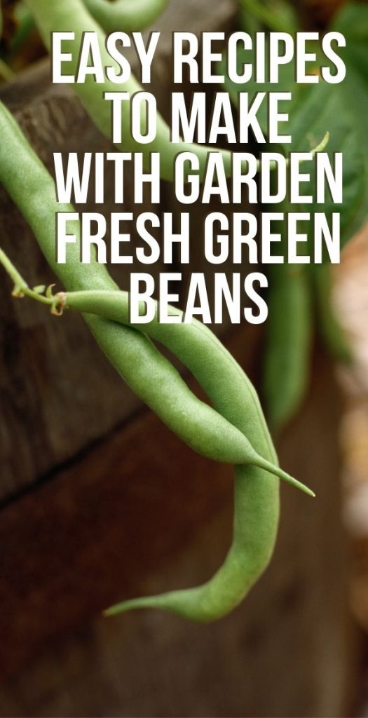 There's nothing like when you get a glut of one thing from the garden, like green beans. It's a great problem, but these easy fresh green bean recipes will make it even better.