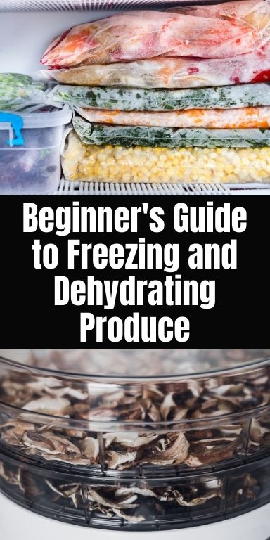 Beginner's Guide to Freezing and Dehydrating Produce