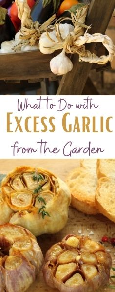 Garlic is my favorite thing to grow in the garden, but what if your crop is too bountiful? Find out what to do with excess garlic from the garden.