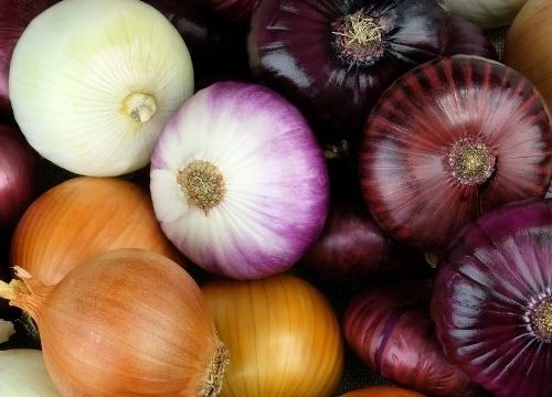 Once in a while, you have a year in the vegetable garden with a ton of success growing onions. But how do you make sure none of your excess onions go to waste?
