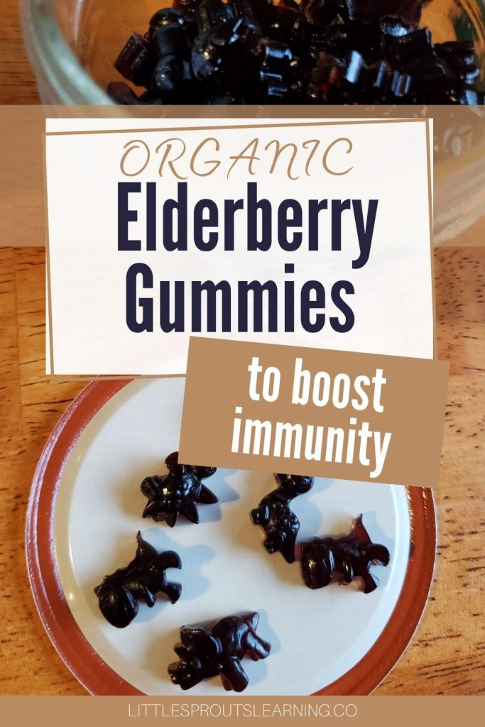 Organic elderberry gummies are convenient to take daily and have the extra health benefits of gelatin. They are easy to make and fun.