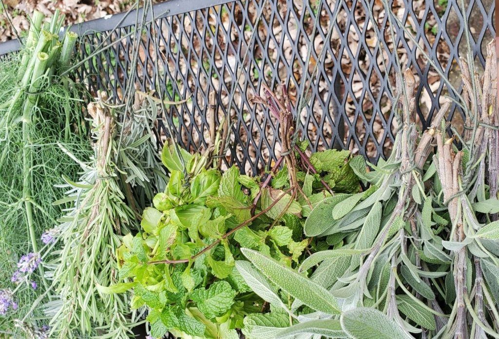bundles of herbs going on to edible herb wreath