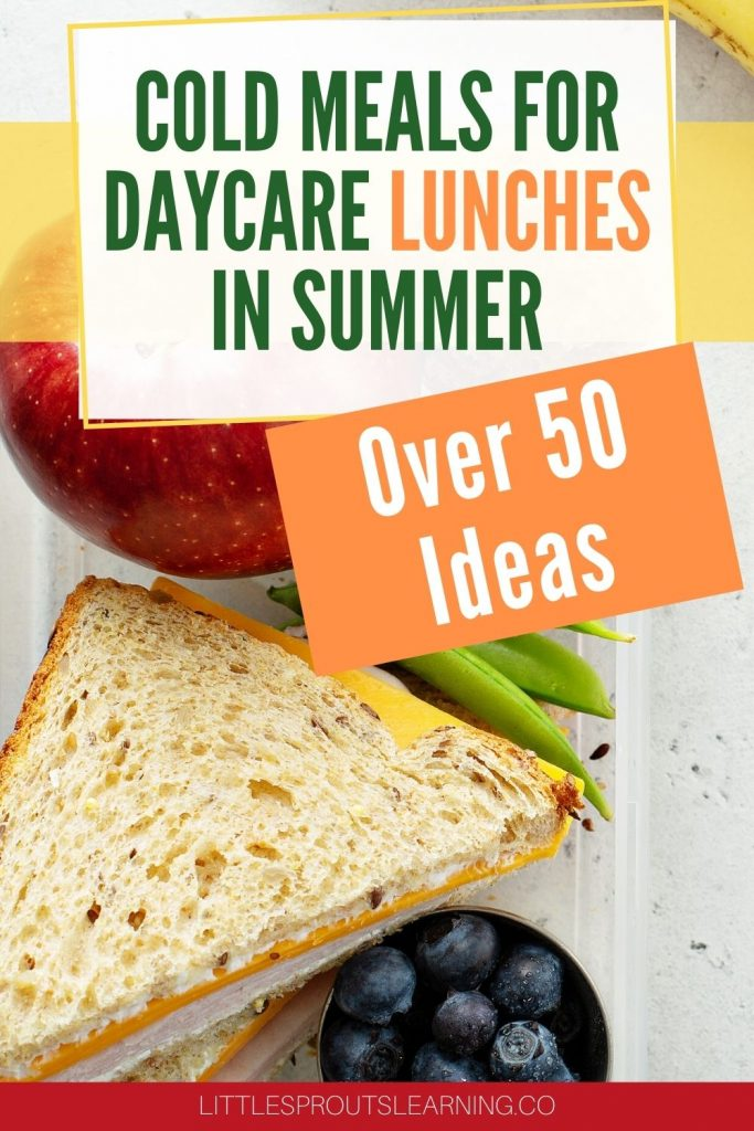 Sandwich and fruit and vegetables in a cold daycare lunch for summer