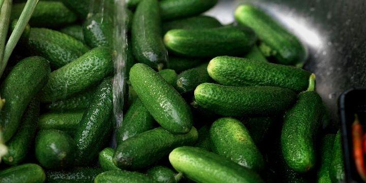 30+ Cucumber Recipes