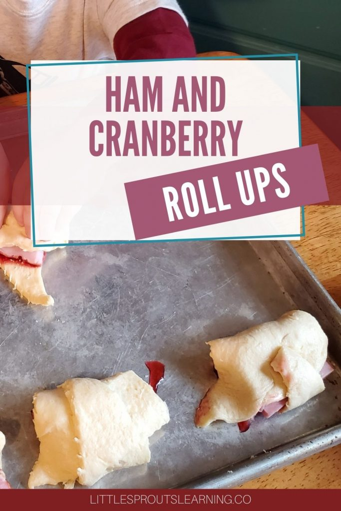 Ham and cranberry sauced rolled up in croissant roll dough