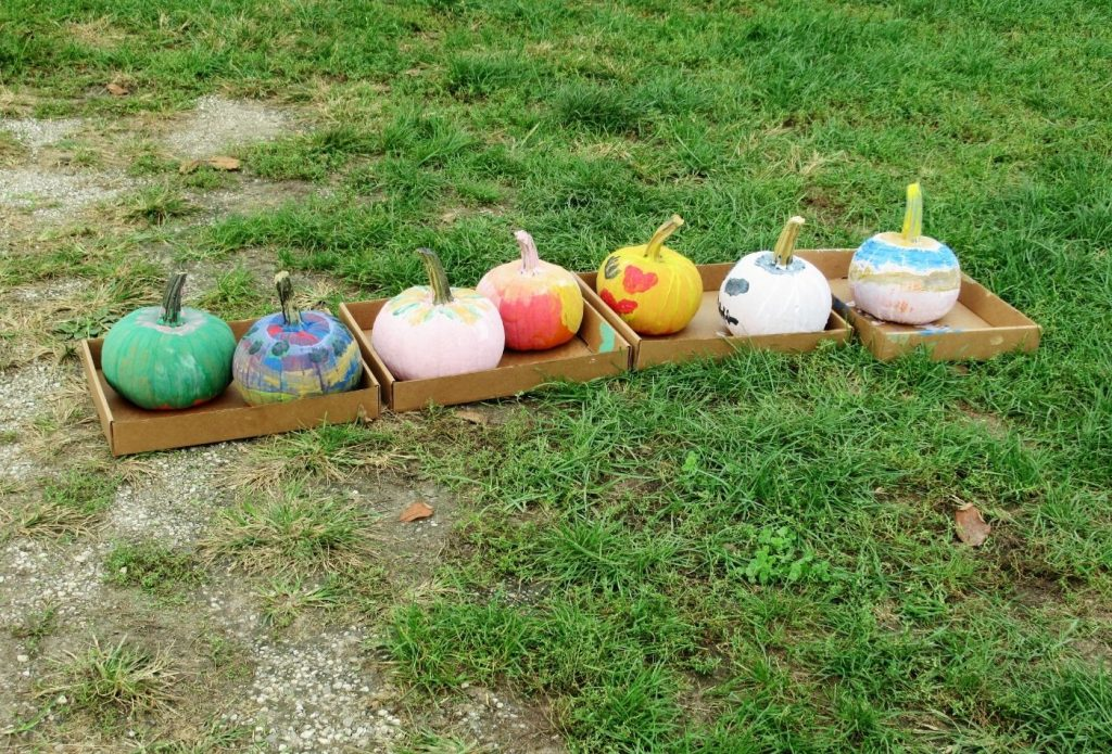 pumpkins painted by kids drying in boxes on the grass